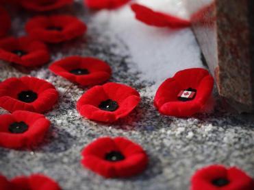 poppy_remembrance_day